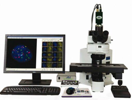 GenASIs PathFusion – решение для диагностики в патологии/ патоморфологии