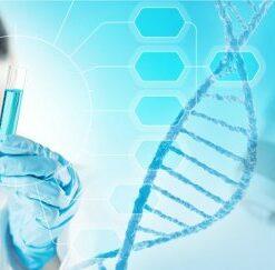 Генетика и молекулярная диагностика
